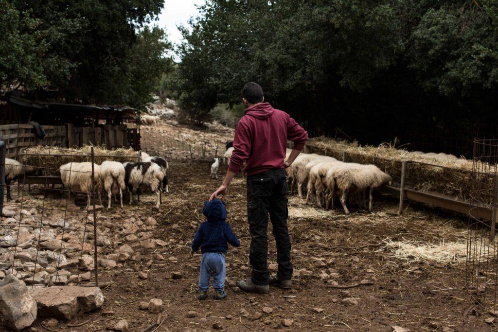 Kostis presso il suo fienile vicino al villaggio di Mesa Lasithi, insieme al figlio Agisilaos.